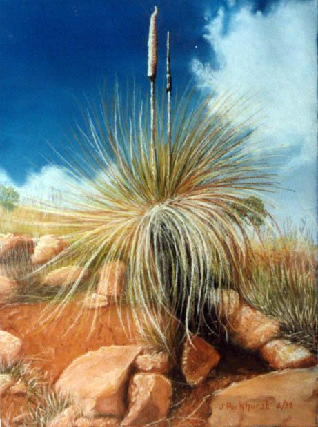 outback-tenacity1