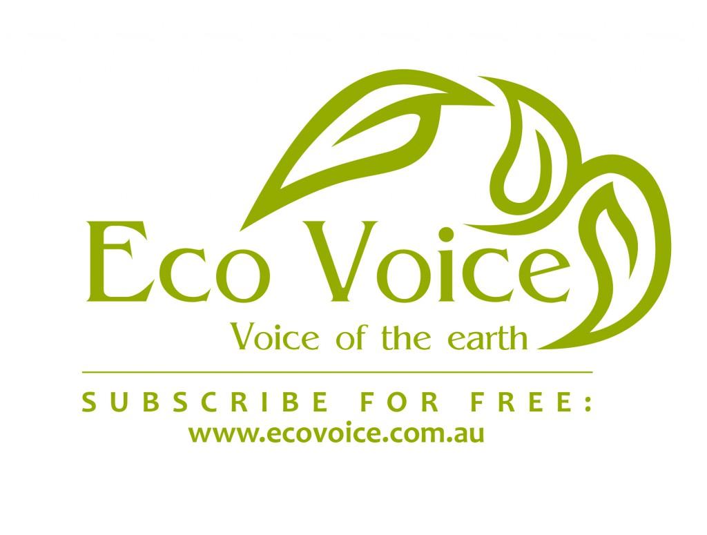 eco-voice-logo-sff-cmyk
