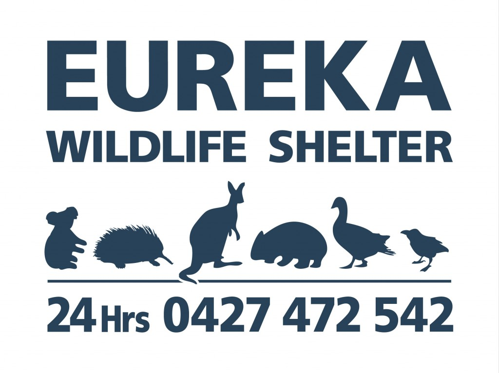Eureka Wildlife Shelter