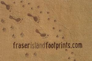 fraser-island-footprints-logo-lo-res
