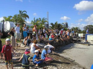 00-dolphins-crowd-waiting